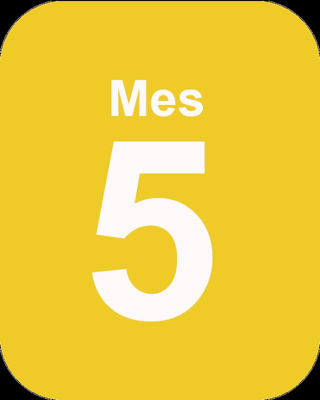 Mes 5