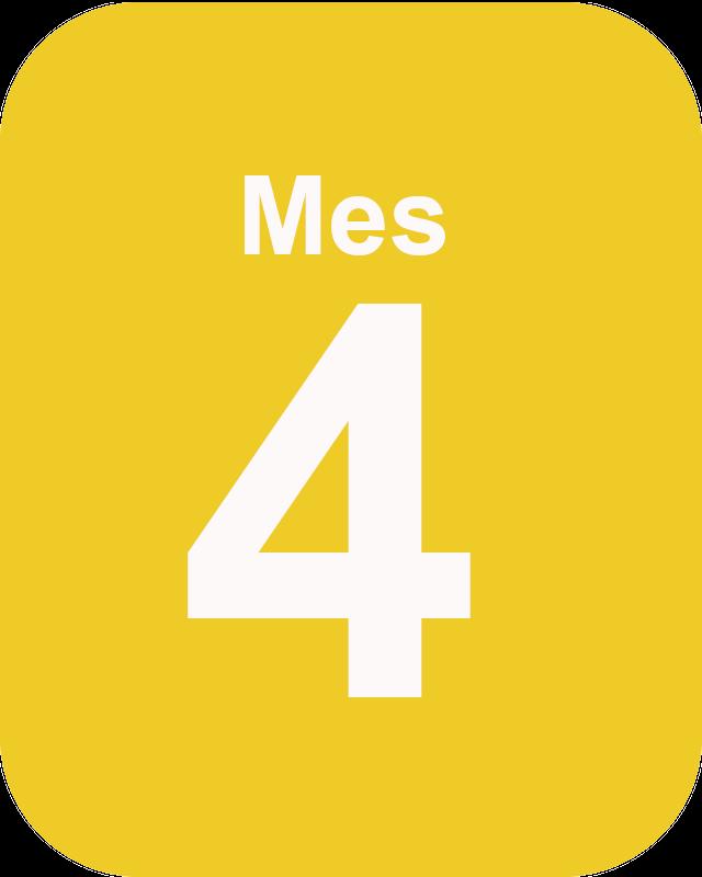 Mes 4