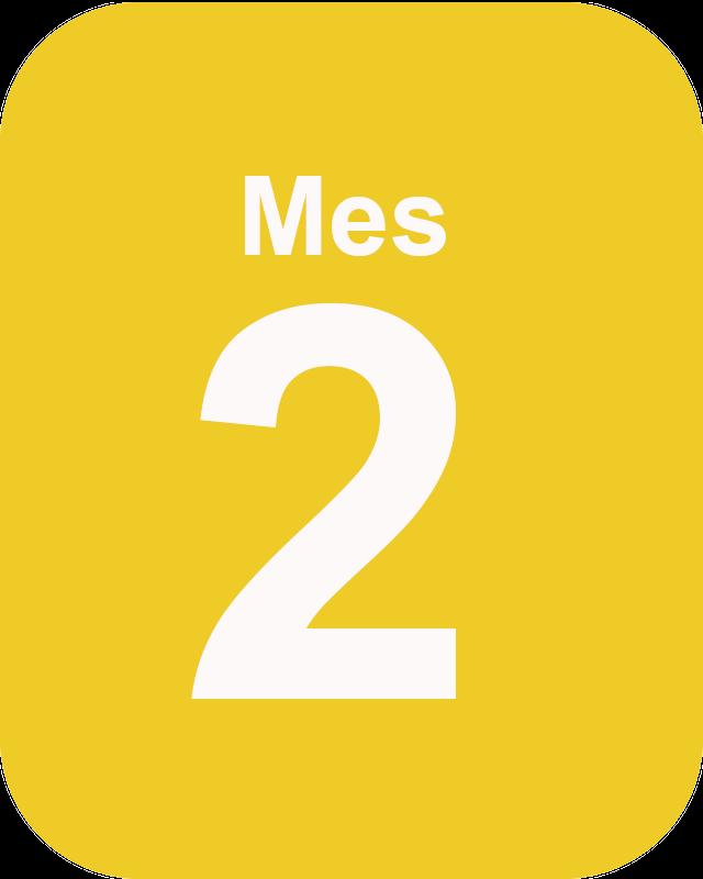 Mes 2