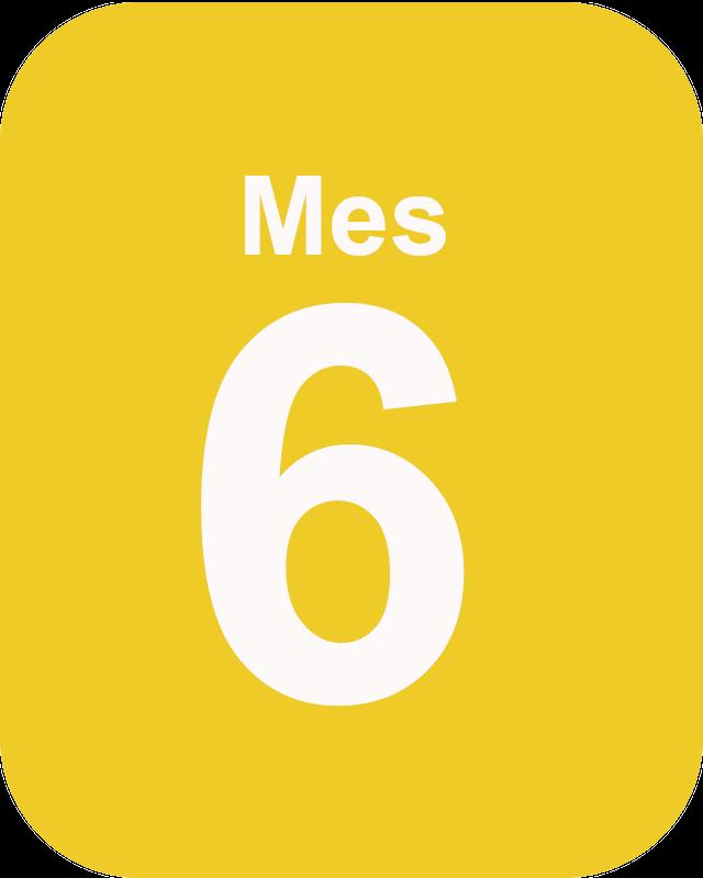 Master mes 6